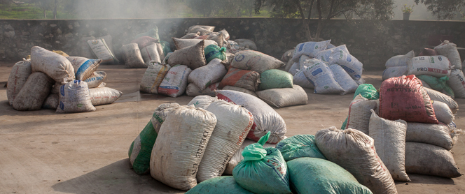 Sacks of olives in the factory yard, waiting their turn to be pressed.