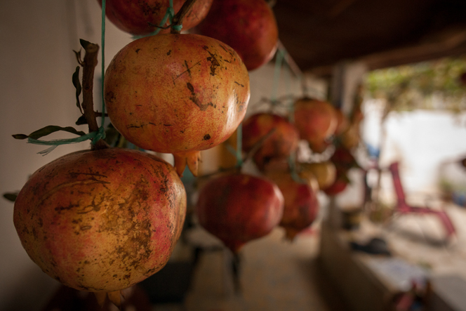 Pomegranates stored for winter.